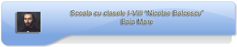 Scoala Nicolae Balcescu